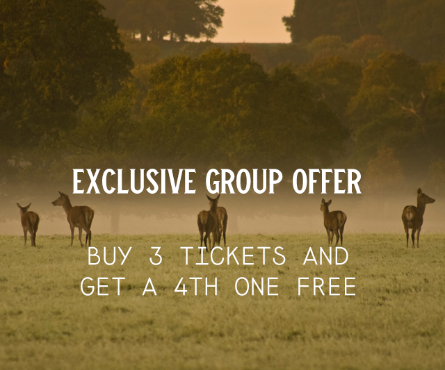 Adult w/e camping tickets