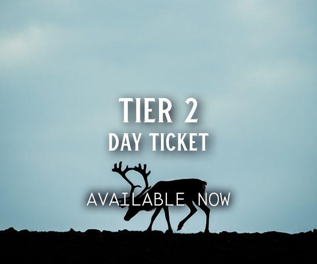 Tier 2 Day Ticket