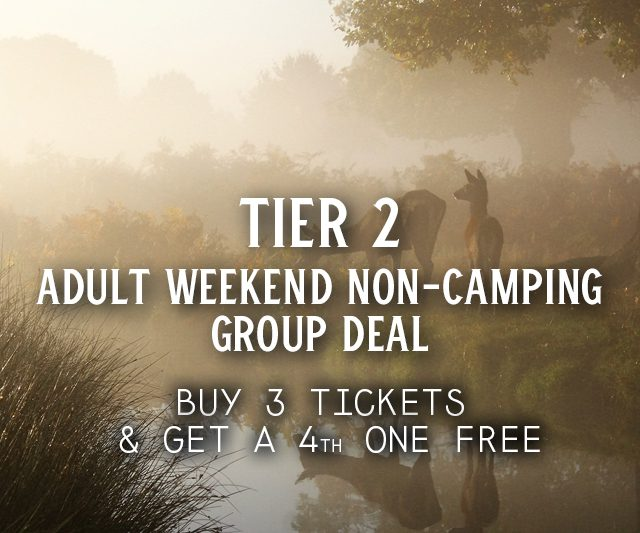 Tier 2 Weekend Non-Camping Group Deal