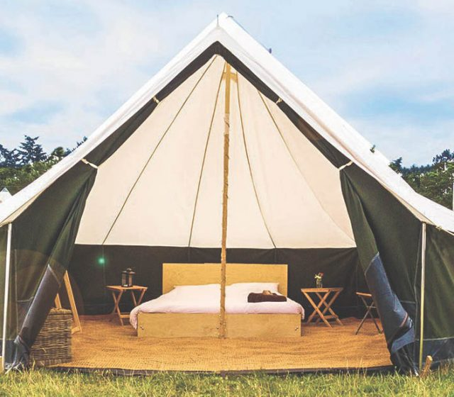 Fancy Camping: Book Now