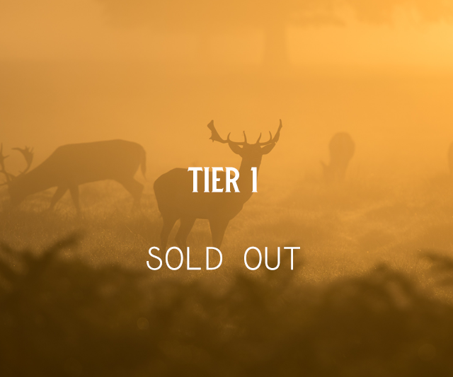 Tier 1 Weekend Tickets (Sold Out)