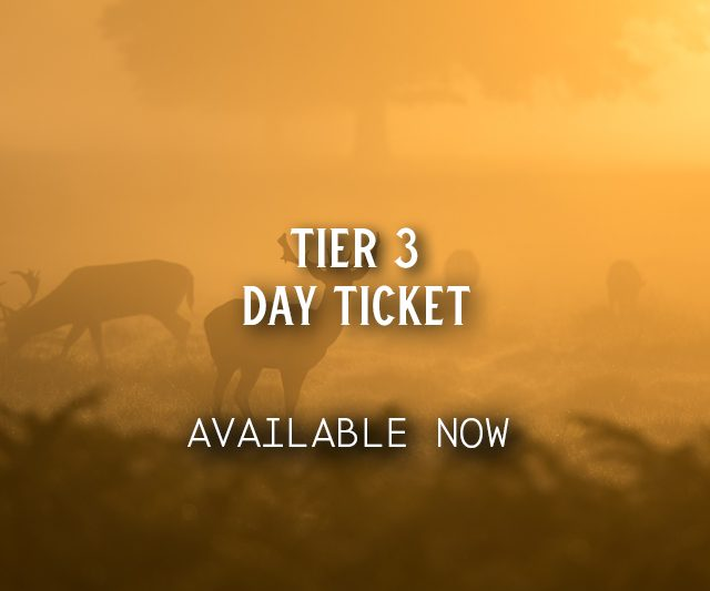Tier 3 Day Tickets
