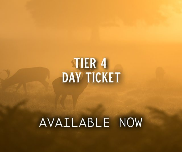 Adult Day Tickets from £45