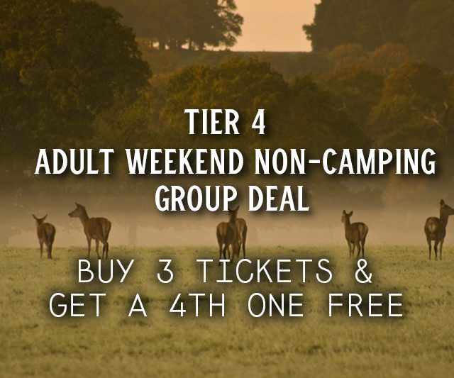 Weekend Non-Camping Group Deal
