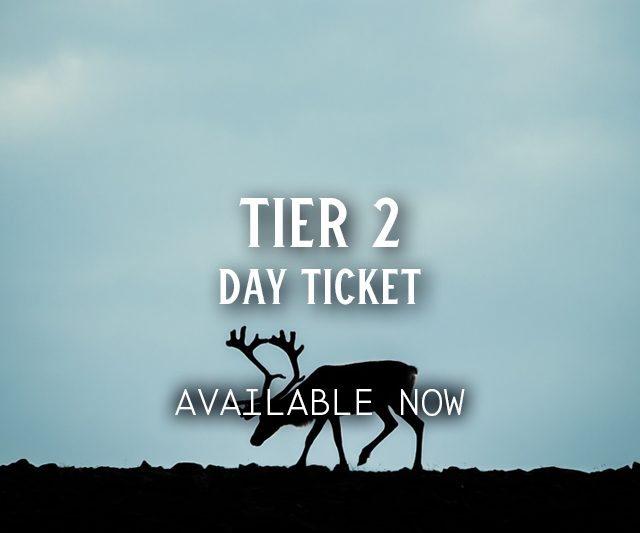 Tier 2 Day Ticket