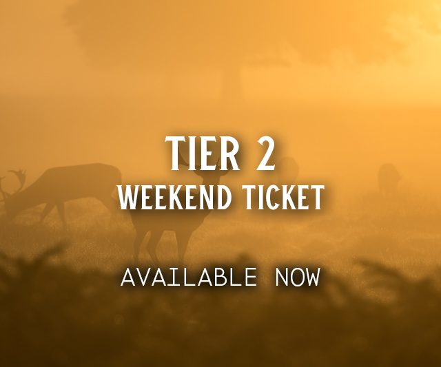 Tier 2 Weekend Ticket