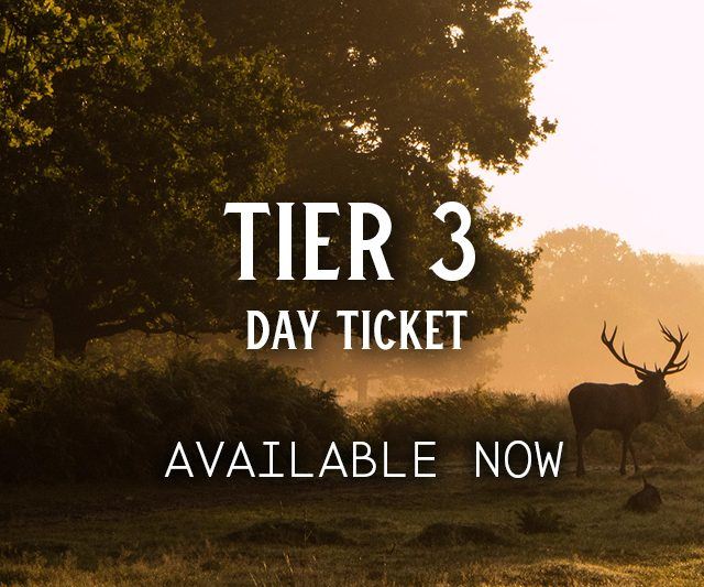 Tier 3 Day Ticket