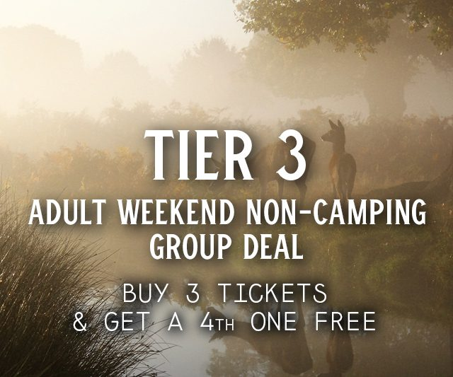 Tier 3 Weekend Non-Camping Group Deal