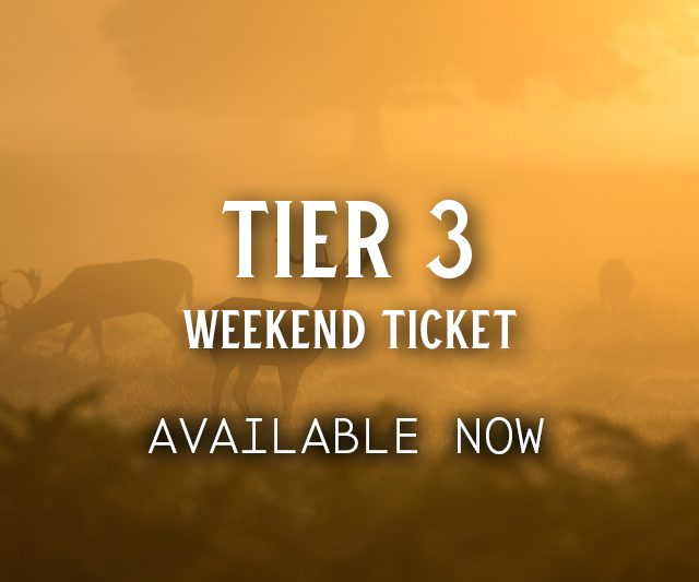 Tier 3 Weekend Ticket