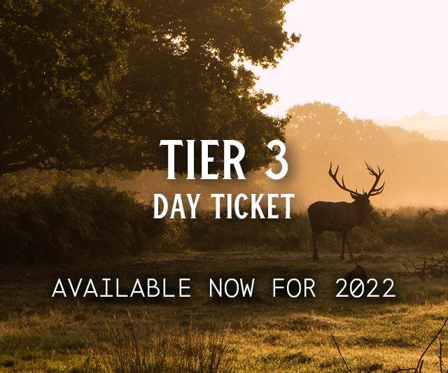 Tier 3 Day Ticket